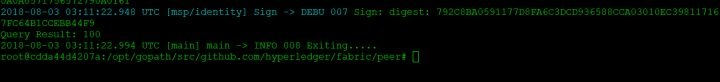 20-Fabric实战进阶-阿里云部署单机多节点网络(二)